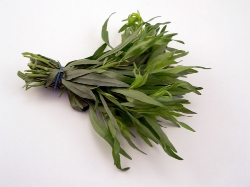 Tarragon Substitute – What to Use ?