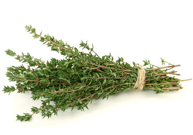 Thyme Substitute – The Best Replacements