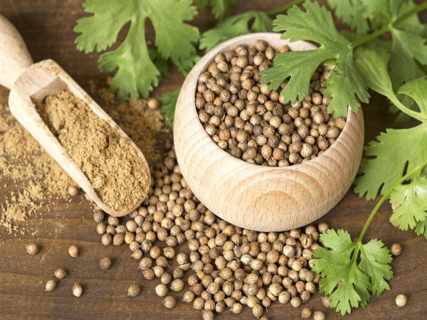 Coriander Substitute – Your Best Bets