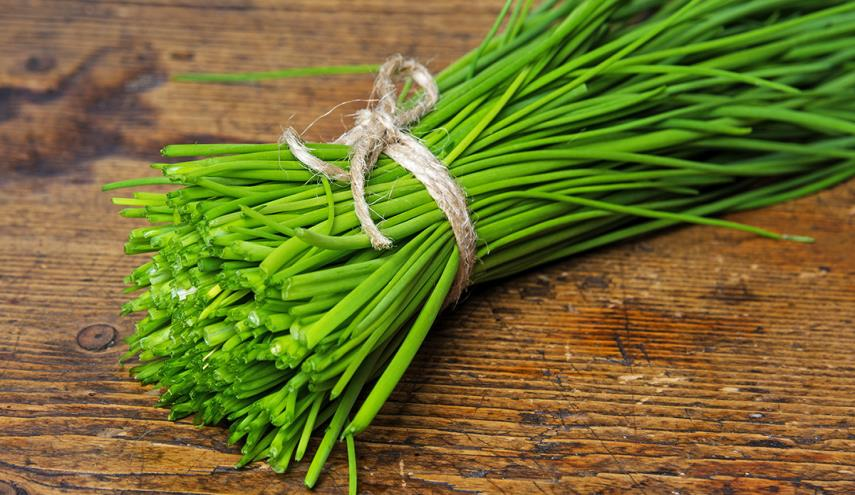 What are Chives?